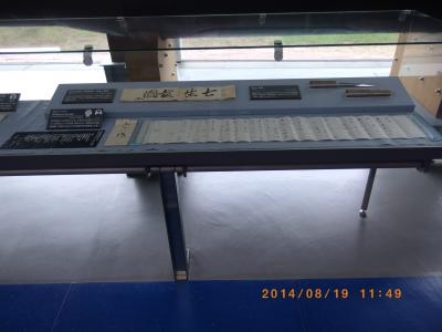 IMGP0355